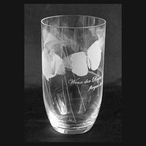 Schmetterlingsglas_2a-Spernerglas