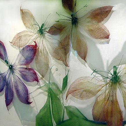 Sperner Glas Gloriosa Maria-Theresia-Klinik Muenchen